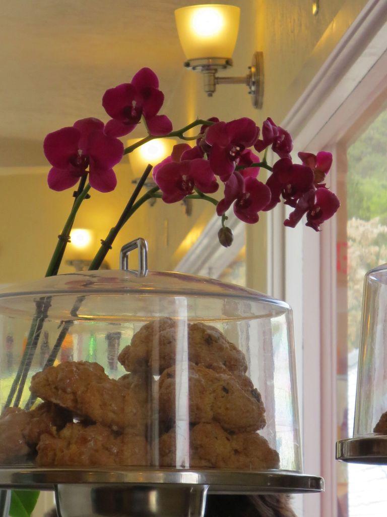 Scones & Orchids