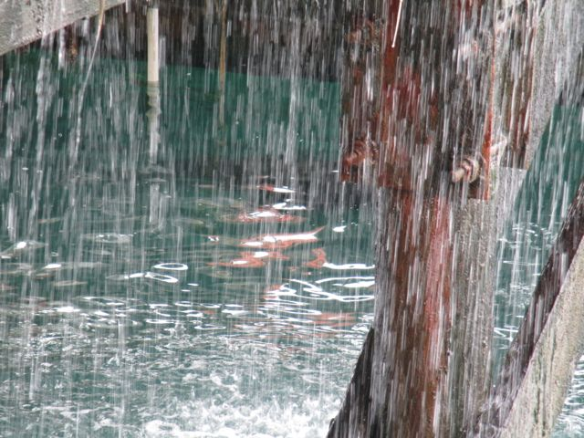 Pier with rain