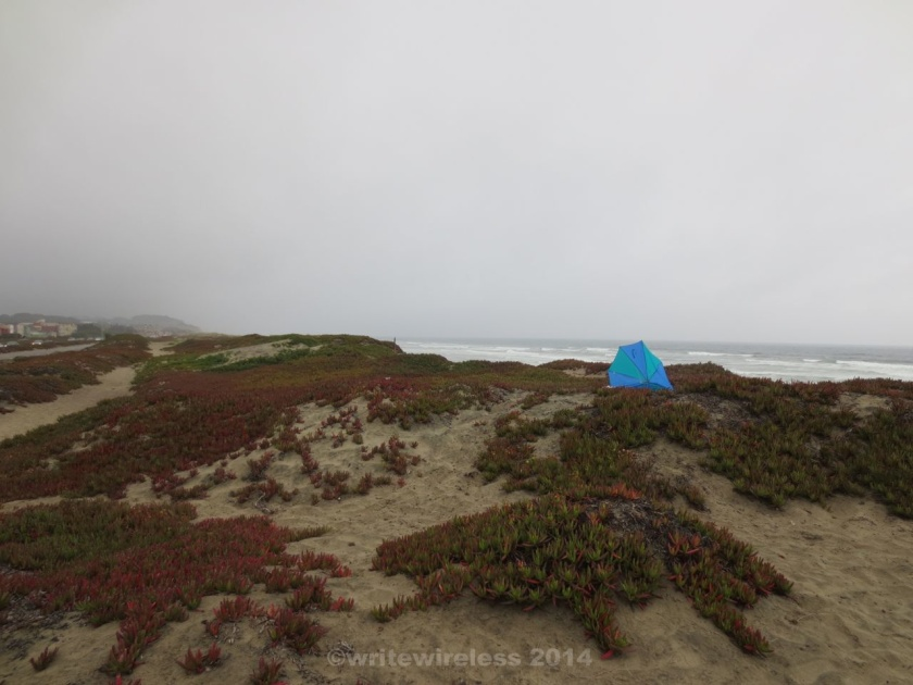Blue Umbrella in Dunes