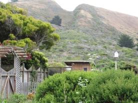 Mori Point Hillside