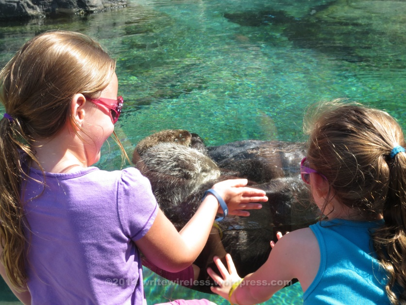 Girls & Otters