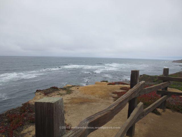 Fitzpatrick marine reserve