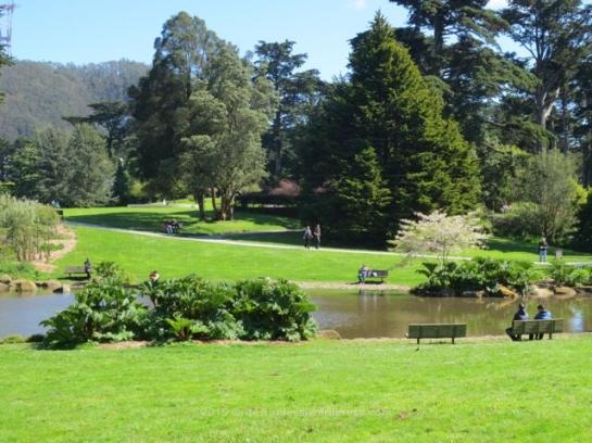 Lake at Arboretum