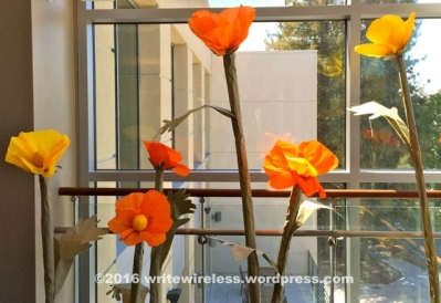 poppiesinWindow